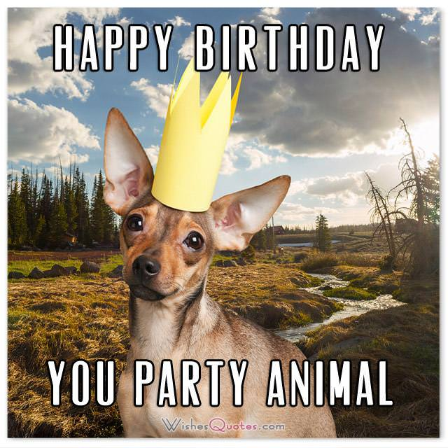 HAPPY BIRTHDAY YOU PARTY ANIMAL. Funny Birthday Messages.