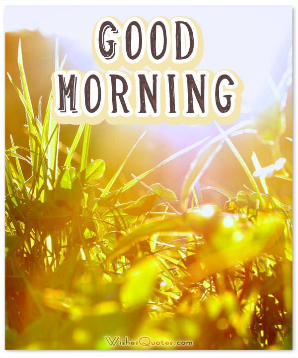 Good Morning Cards, Images and Messages for Social Media ...