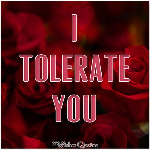 Funny Valentine's Day Cards- I Tolerate You Funny Card