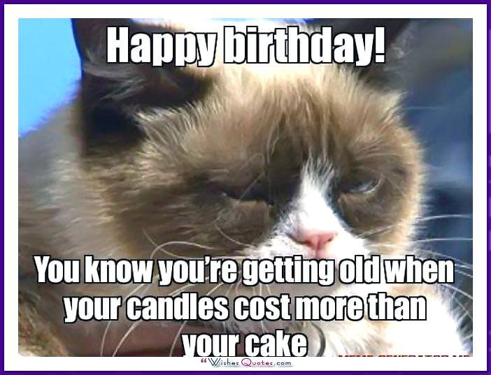 Birthday Meme with a Cat: Your candles cost more than your cake!