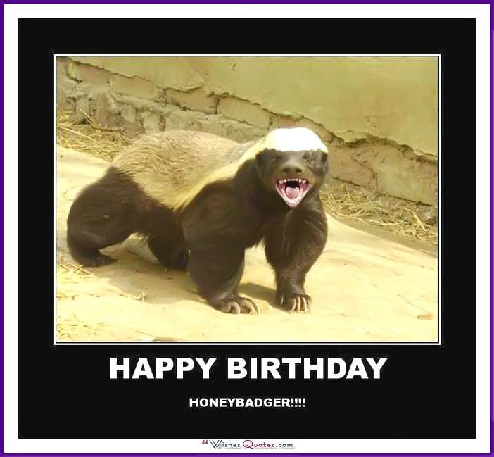 Funny Memes For Birthday : Funny happy birthday meme animal imgkid the
