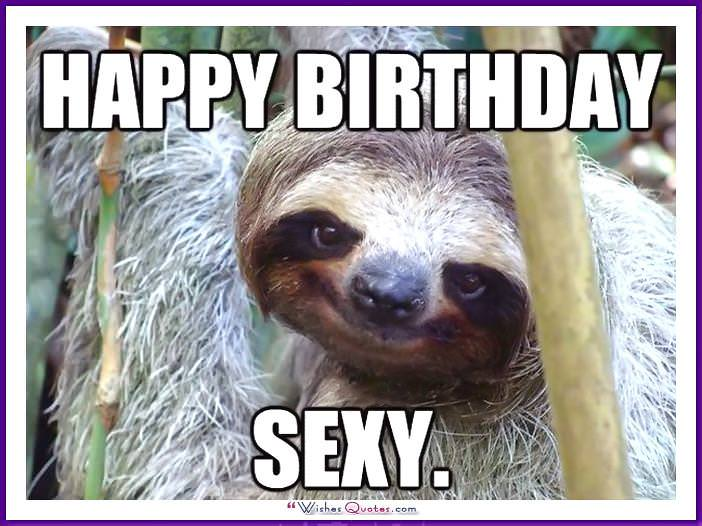 Funny Animal Birthday Meme: Happy Birthday Sexy!
