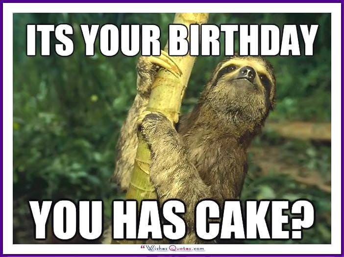 Funny Animal Birthday Meme: