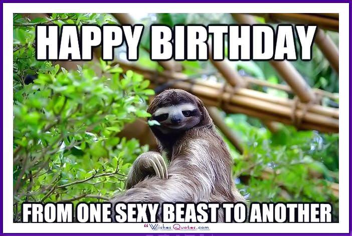 Funny Animal Birthday Meme: From one sexy beast to another