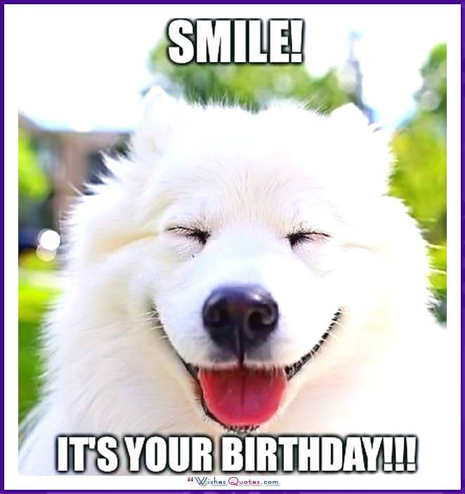 Cute Cat Birthday Memes