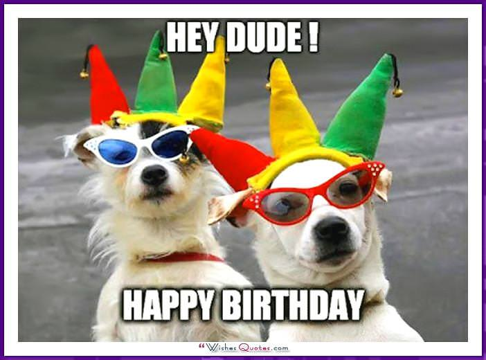 Funny Dog Birthday Meme Hey Dude Happy