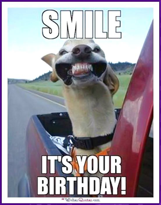 Funny Dog Birthday Meme: Smile! It's your birthday!