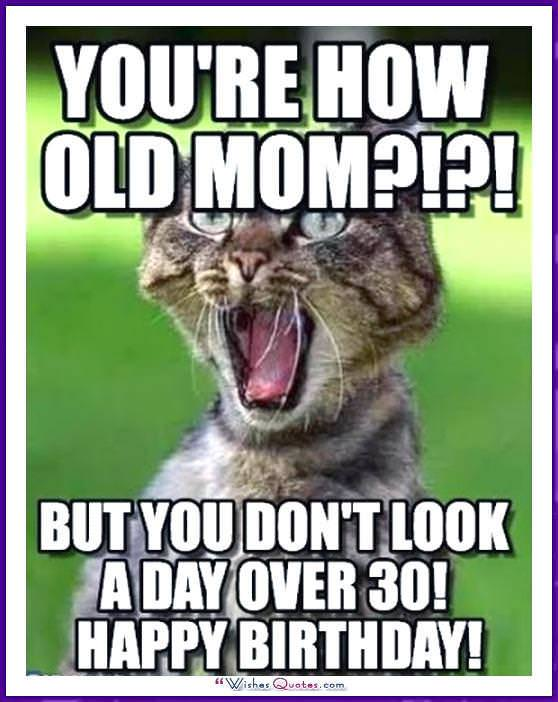 Funny Memes For Your Dad : Funny birthday memes for dad mom brother or sister