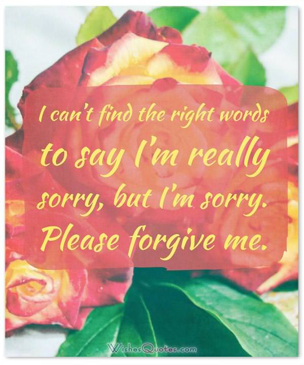 Apology Message: I can't find the right words to say I'm really sorry, but I'm sorry. Please forgive me.