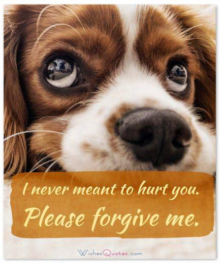 Say you are Sorry to a Friend: I never meant to hurt you. Please forgive me.