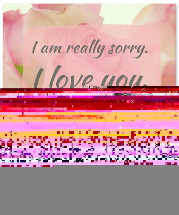 Sorry Message: I am really sorry. I love you. Let's start over, please.