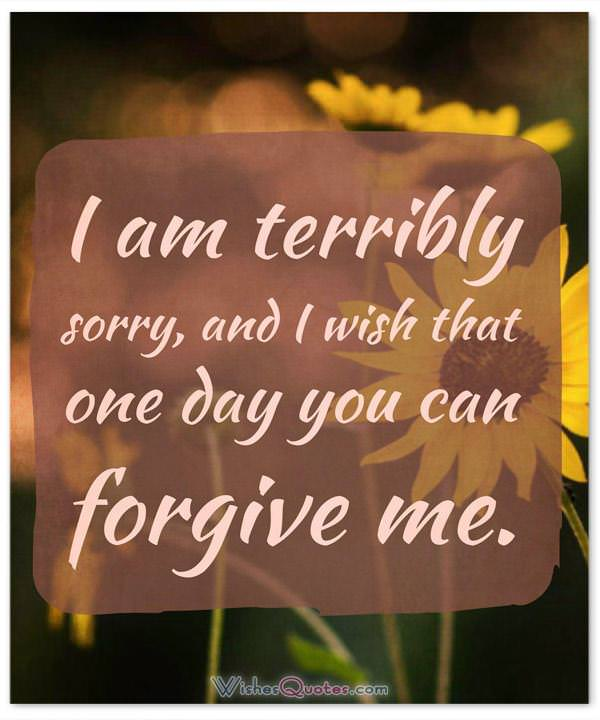 Apology Message: I am terribly sorry, and I wish that one day you can forgive me.
