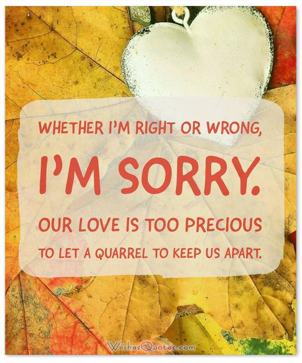 Apology quotes to boyfriend