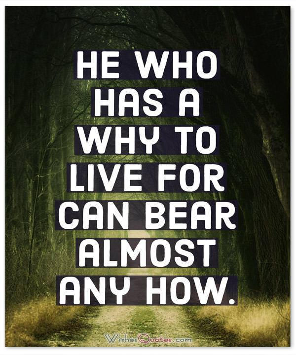Strength Quotes: He who has a why to live for can bear almost any how.