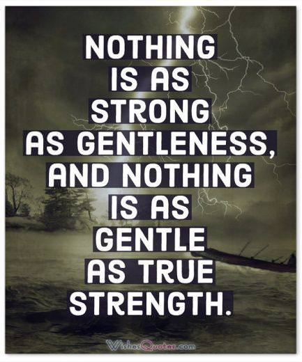 Strength Quotes: Nothing is as strong as gentleness, and nothing is as gentle as true strength.
