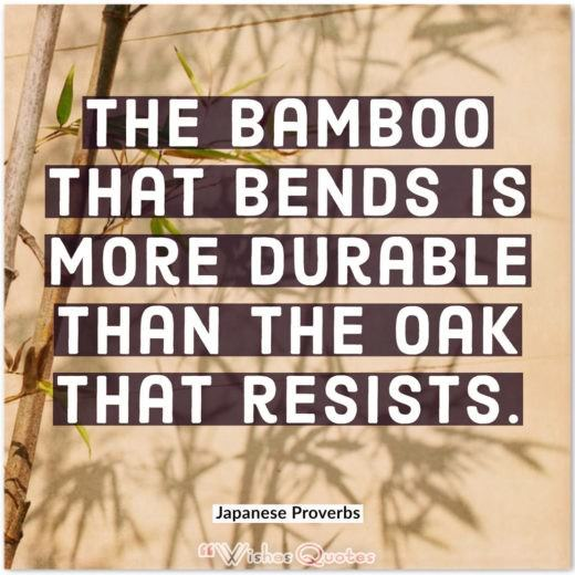 Japanese Proverbs - The bamboo that bends is more durable than the oak that resists.