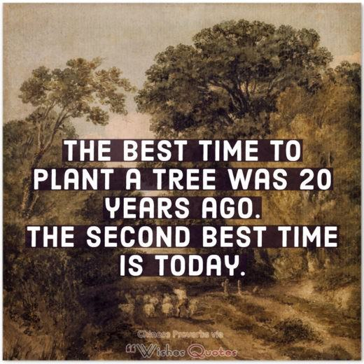 Inspiring Chinese Proverbs and Quotes - The best time to plant a tree was 20 years ago. The second best time is today.