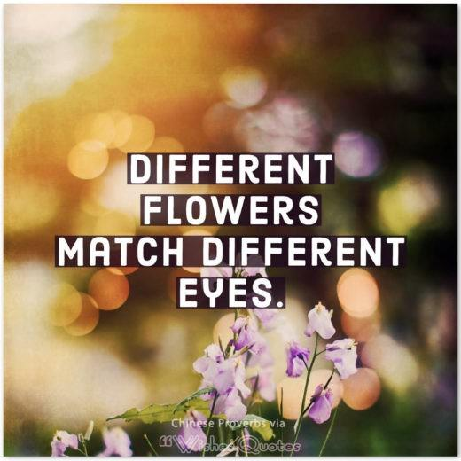 Chinese Proverbs and Quotes about Love - Different flowers match different eyes.