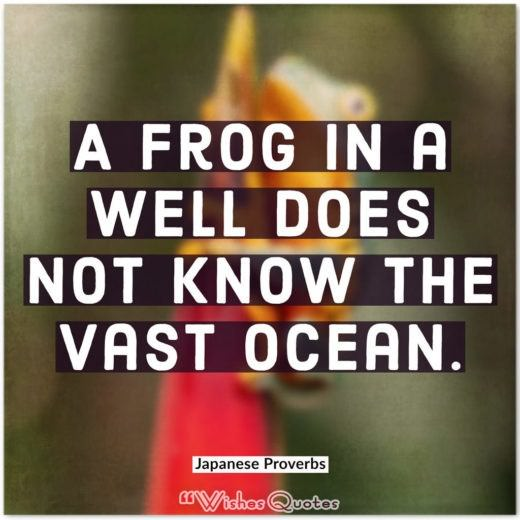 Japanese Proverbs - A frog in a well does not know the vast ocean.