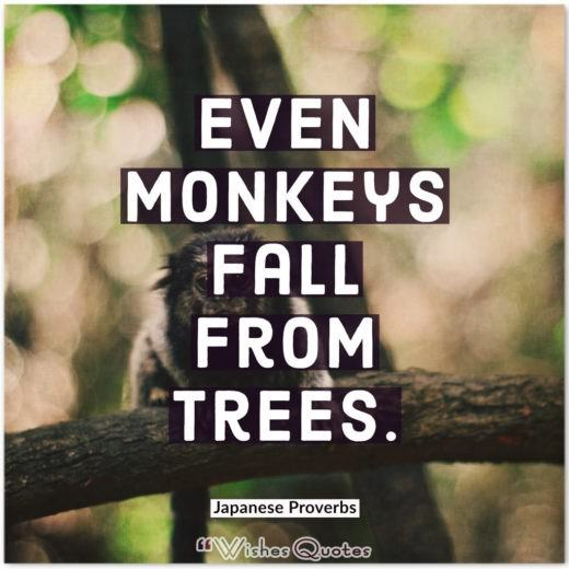Japanese Proverbs - Even monkeys fall from trees.