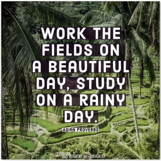 Asian Proverbs - Work the fields on a beautiful day, study on a rainy day.